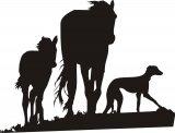 Galgo und 2 Pferde